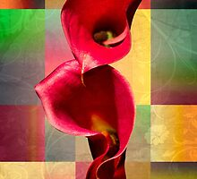 floral  by motiashkar