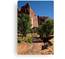 Beauty in the Canyon Canvas Print