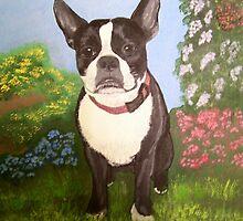 Boston Terrier by Karen Wilson