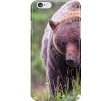 Big Mama Grizzly iPhone Case/Skin