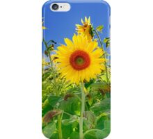 Happiness Shines Through iPhone Case/Skin
