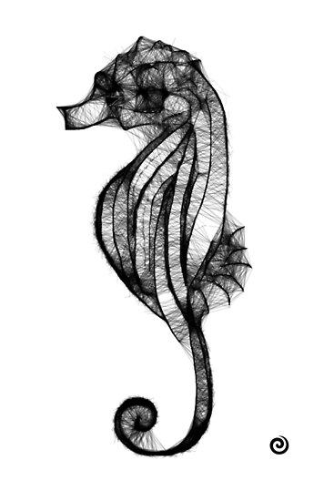 Seahorse Scribbler by Jacqueline Eden