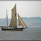 Not so Tall Ship Maybe by DonMc