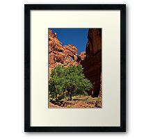 The Tree and the Window Framed Print