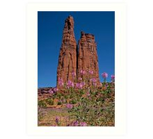 Spider Flowers and Spider Rock Art Print