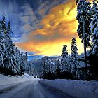 I Have The Blues by Charles & Patricia   Harkins ~ Picture Oregon