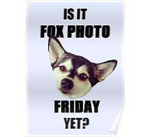 Is it #FoxPhotoFriday Yet? Poster