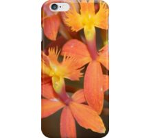 a brunch of the small orchids iPhone Case/Skin