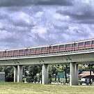 A Train Ride to the Gardens of China & Japan. by Larry Lingard-Davis