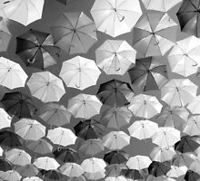 Black and White Brollies by robpalmer