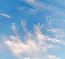 Clouds (20140908v) by robpalmer