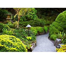 Mystery - Butchart Garden - BC Photographic Print