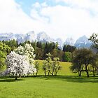 Green Spring Austrian Landscape by BrookeRyanPhoto