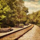 On the right track by vigor