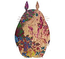 Totoro from Hayao Miyazaki - used look Photographic Print