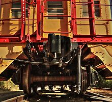Caboose On The Loose by James Eddy