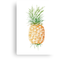 Pinapple illustration Canvas Print