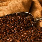 Coffee beans and metal scoop by DavidMay