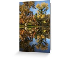 Sycamore Pool Reflections Greeting Card
