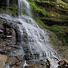 Cathedral Falls at Gauley Bridge by Kenneth Keifer