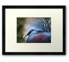 Illustrious Framed Print