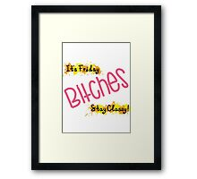 Stay Classy Bitches Framed Print