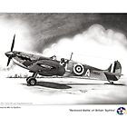 Restored Battle of Britain Spitfire by Trenton Hill