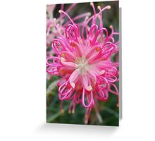 Heart of Pink Greeting Card
