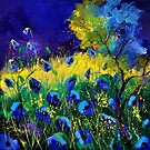 Blue poppies 7741 by calimero