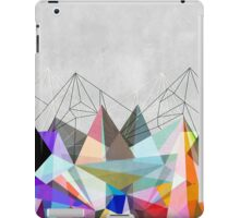 Colorflash 3 iPad Case/Skin