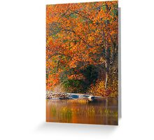 Tangerine Idyll Greeting Card