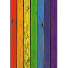 Rainbow fence by VallaV