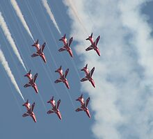 The Reds by photogemic