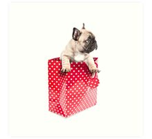 Gift Wrapped Frenchie Art Print