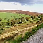 Yorkshire Dales near Skipton, UK by GeorgeOne