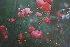 Faery Lanterns by Indea Vanmerllin