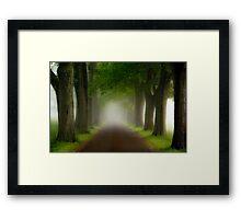 Spring Fog Framed Print