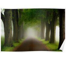 Spring Fog Poster