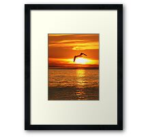 Flight into the Fire -- Seagull over Lake Michigan Framed Print