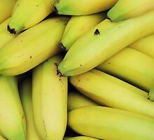 Many Bananas And One Fly by Alexandra Lavizzari