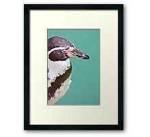 P..P..P..Pick up a Penguin Framed Print