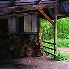 The Woodshed by lezvee