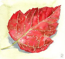 Autumn Leaf - watercolours by Gee Massam