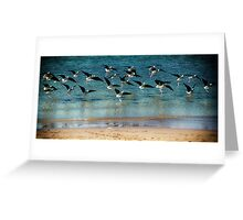 Birds of a Feather...... Greeting Card