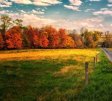 Autumn on the Country Road by KellyHeaton