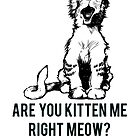 Kitten Me Right Meow? by Alan Craker