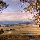 Wineries in Denman II - Near Muswellbrook, NSW by Mark Richards