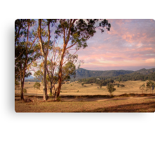 Wineries in Denman - Near Muswellbrook, NSW Canvas Print