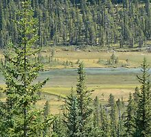 Valley in the Rockies by Jeannine St-Amour