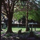 Churchyard with graves Fladbury Church England 198405140020  by Fred Mitchell